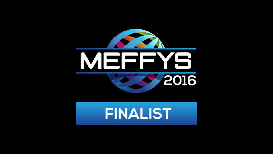 MEFFYS 2016 Finalist