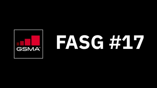 FASG #17